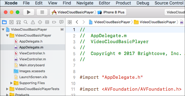 Project in Xcode